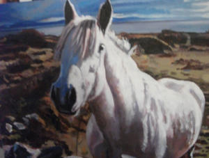 oil painting of a connemara pony